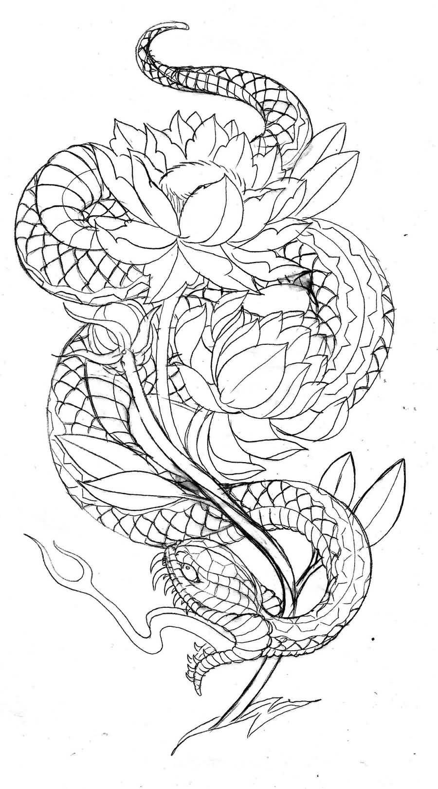 Image Result For Dragon Japanese Outline