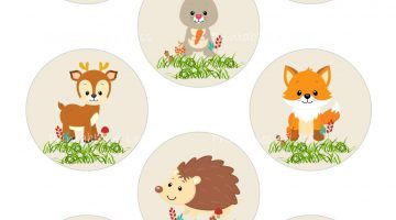 Baby Animals Pictures Printable