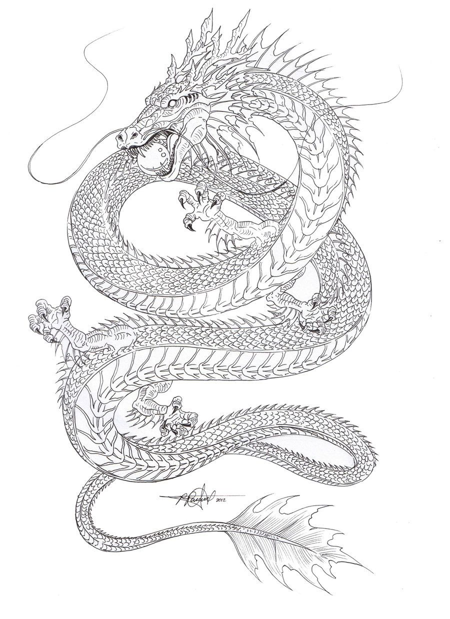 Kind Of Liking The Shape Water Dragon Outline By Artstain