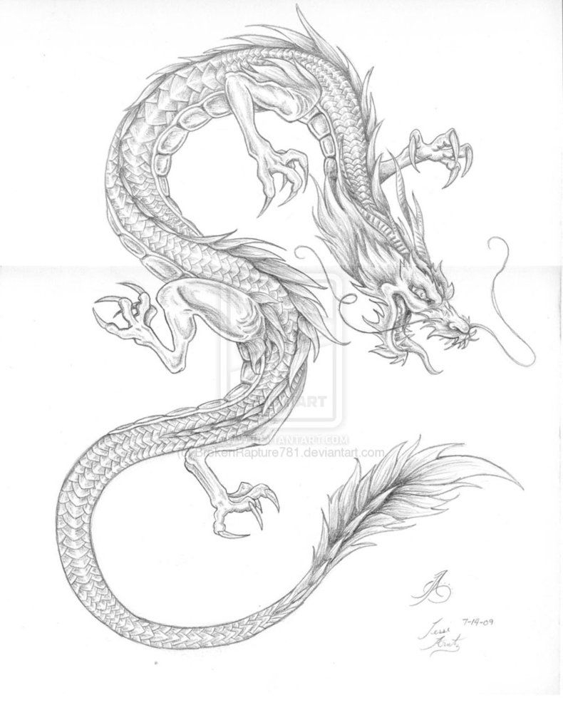 Japanese Dragon Outline