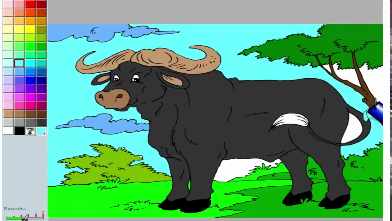 African Buffalo Coloring Pages For Kids To Learn To Color And