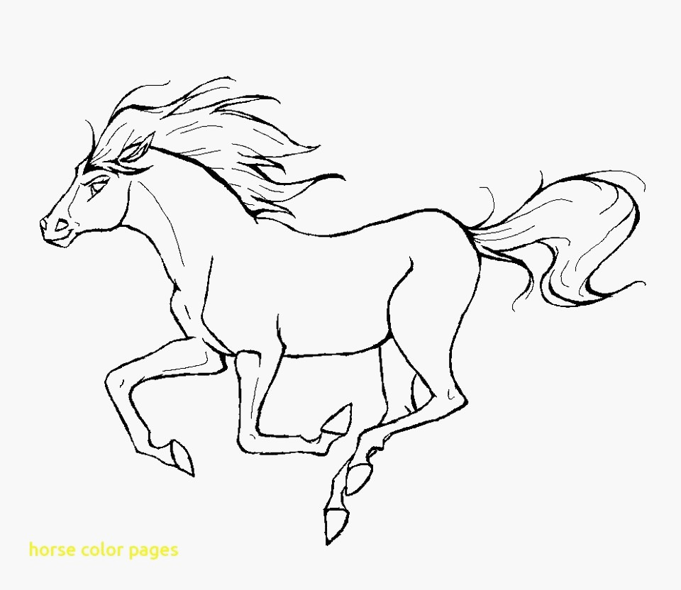 Narwhal Coloring Pages Best Detailed Horse Coloring Pages S