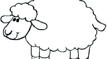 Sheep To Color