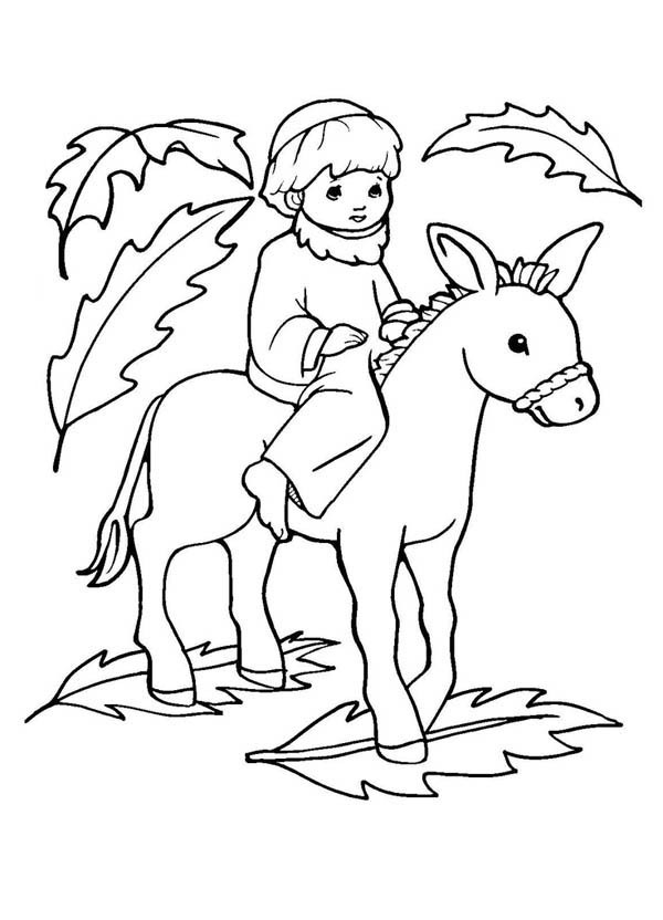 Jesus On Donkey Coloring Page  2403397