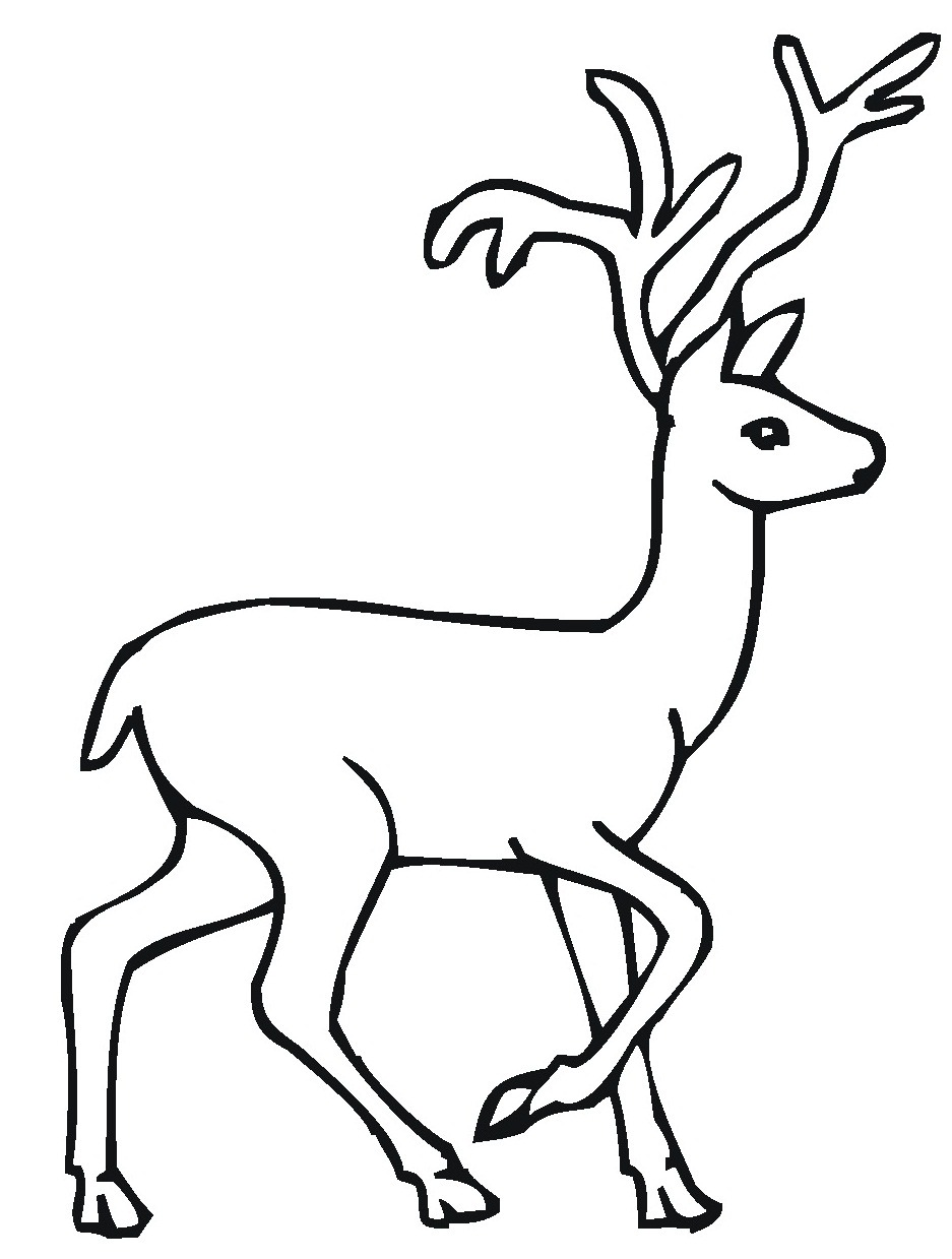 Printable Deer Coloring Pages Coloring Pages