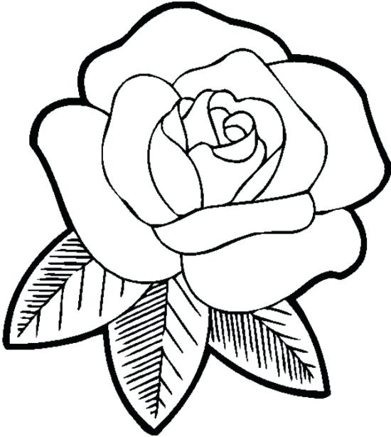 Pictures Of Roses To Color And Print  2568223