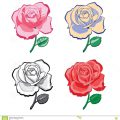 Roses To Color And Print