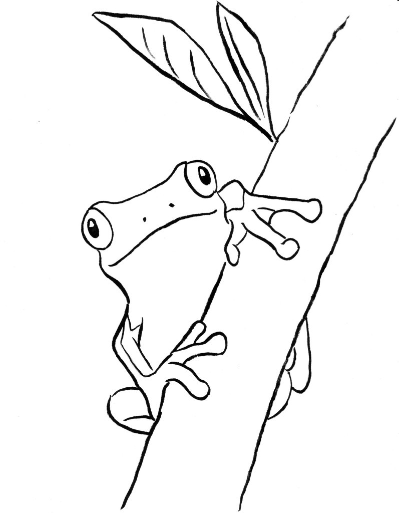 Tree Frog Coloring Page