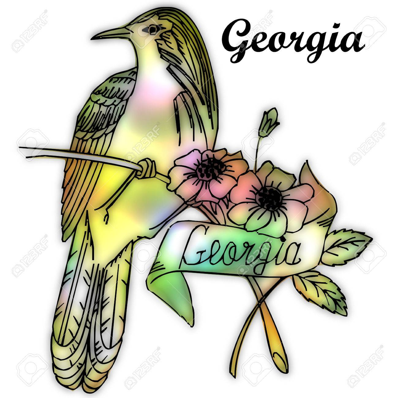 Georgia State Bird Stock Photo, Picture And Royalty Free Image