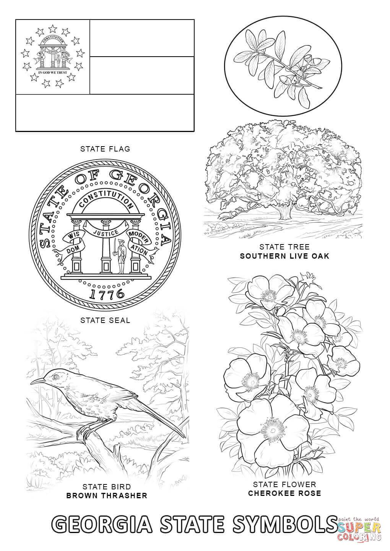 Georgia State Symbols Coloring Page