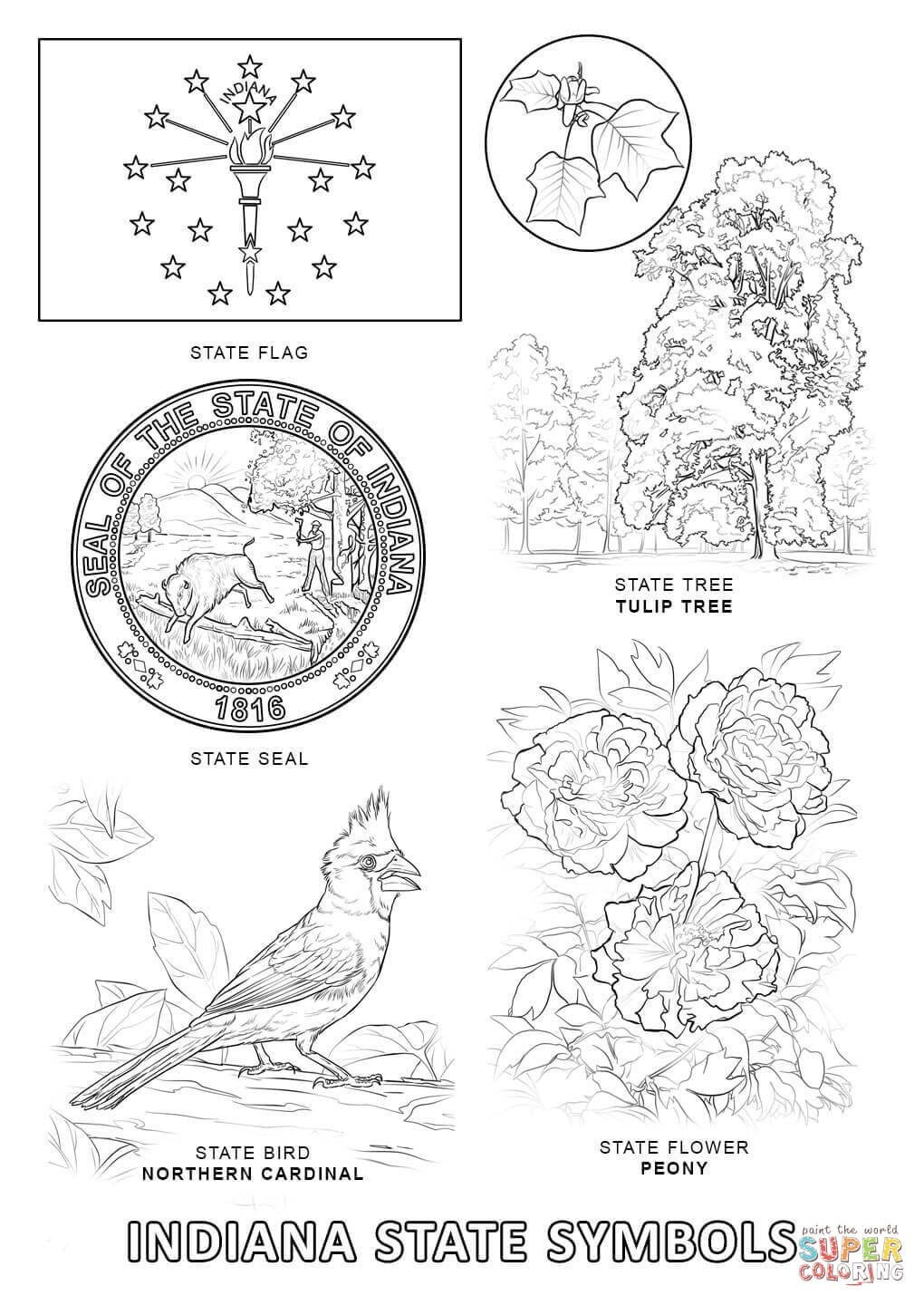 Canada Goose Bird Coloring Pages Free Printable Realistic Page