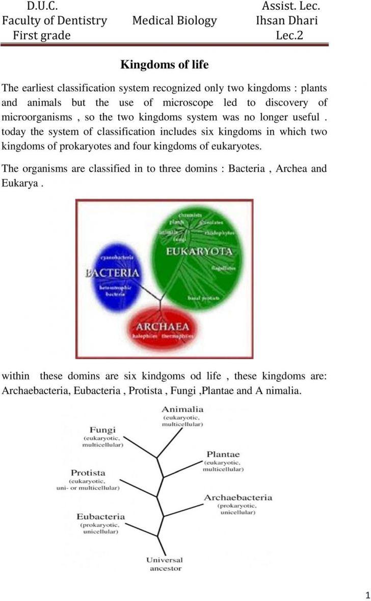 Six Kingdoms Worksheet