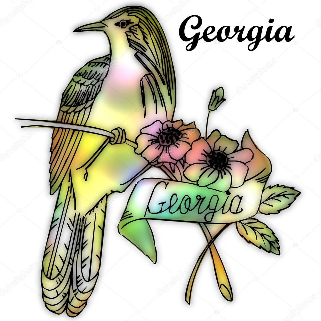 Georgia State Bird — Stock Photo © Jrtburr  51256857