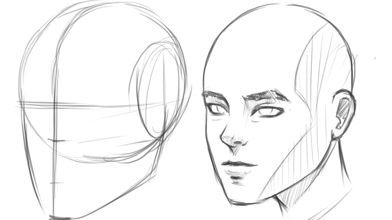 How To Draw Human Head 3 4 View