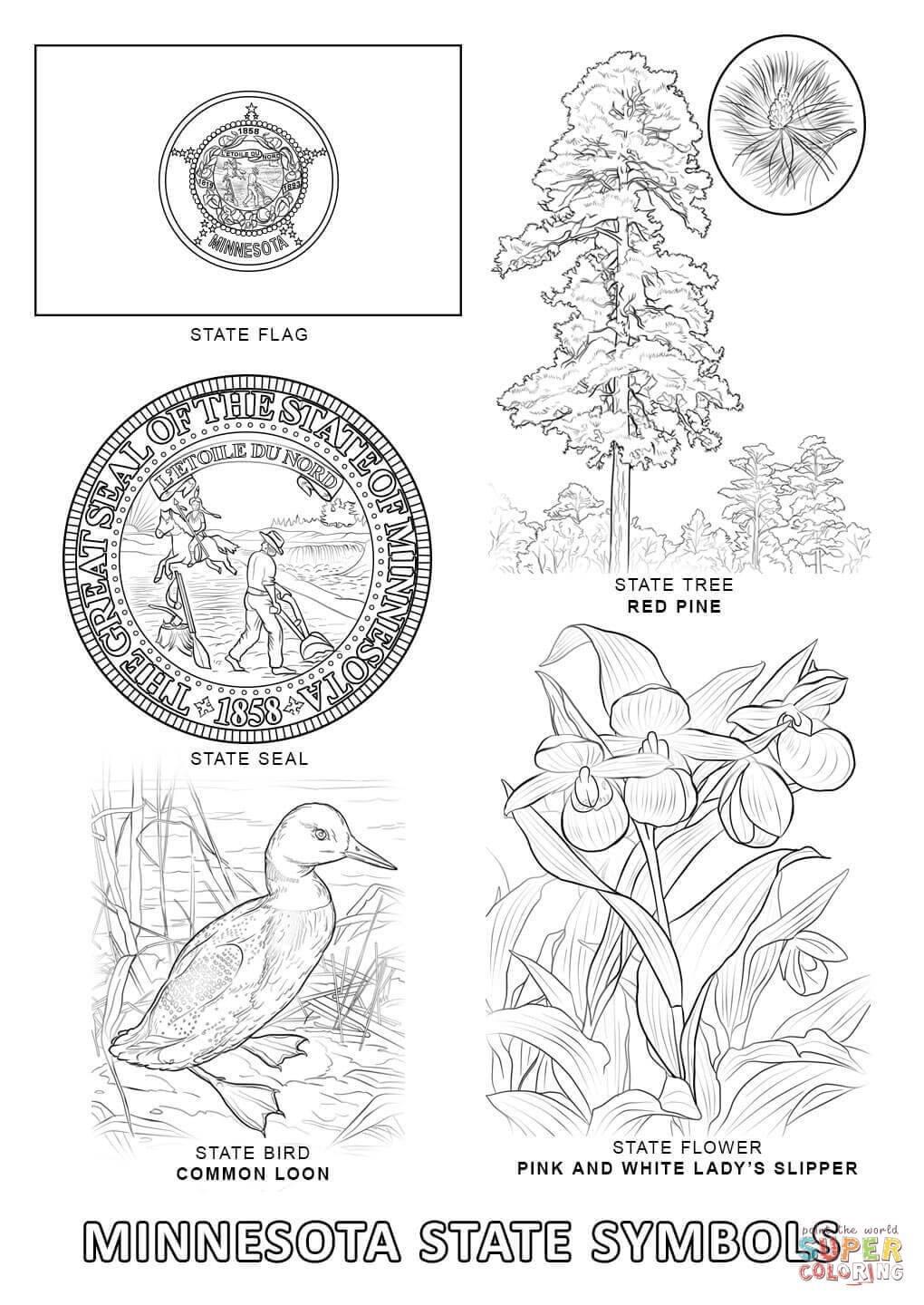 Minnesota State Symbols Coloring Page Free Printable Pages