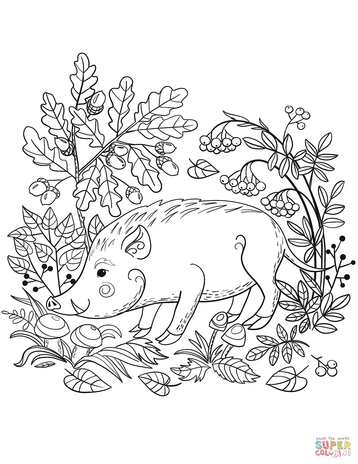 Wild Boar In The Forest Coloring Page