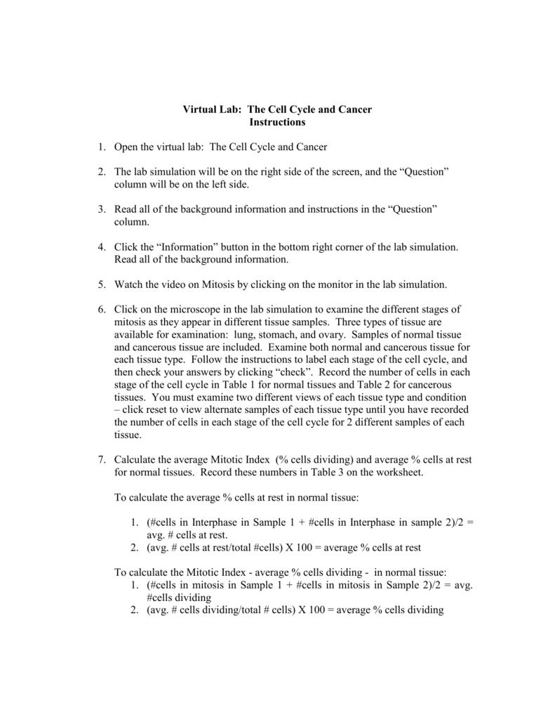 Worksheet  The Cell Cycle Worksheet  Worksheet Fun Worksheet Study