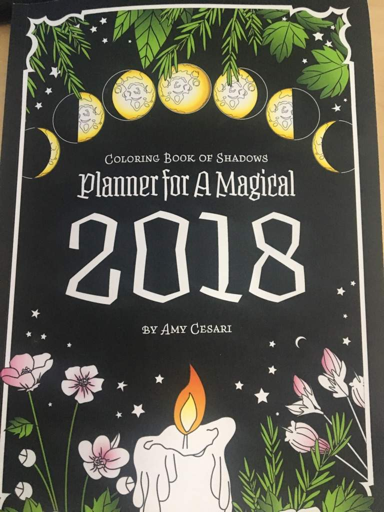 Book Review  Coloring Book Of Shadows 2018 Planner