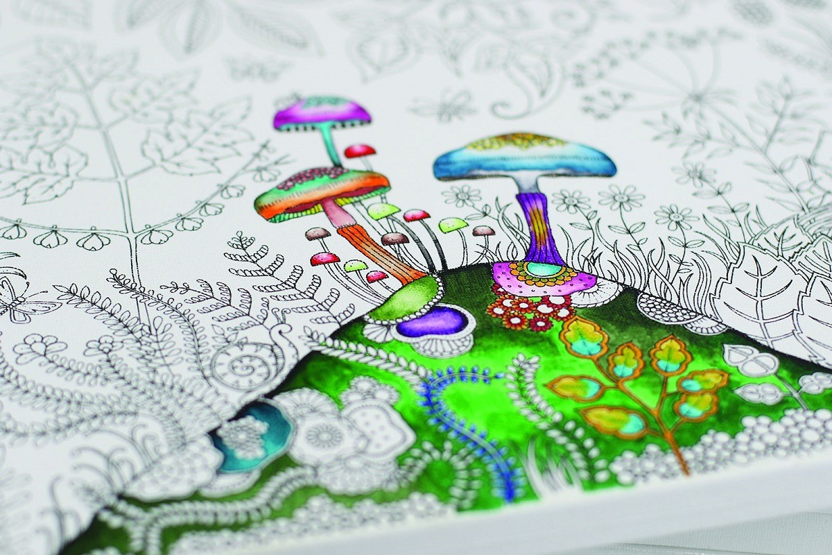 Johanna Basford Colouring Canvas