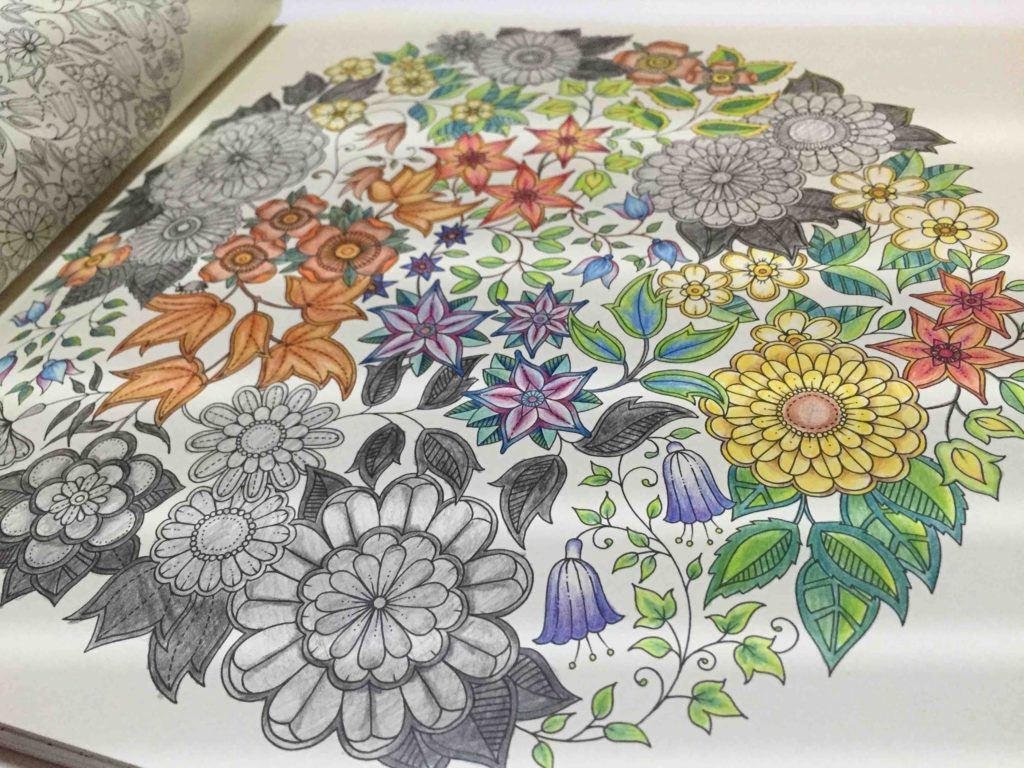 The Secret Garden Colouring Coloring Book 秘密花園 著色本 비밀