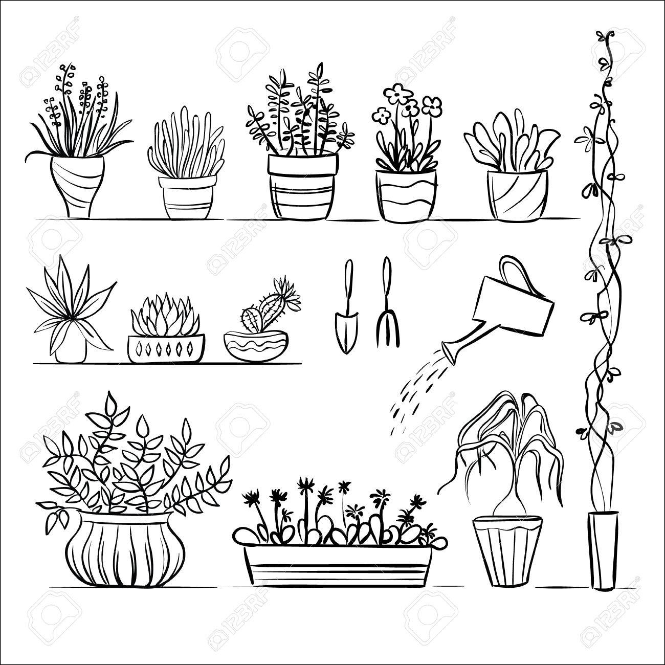 Pot Plants And Tools Sketch  Hand Drawing Set Royalty Free