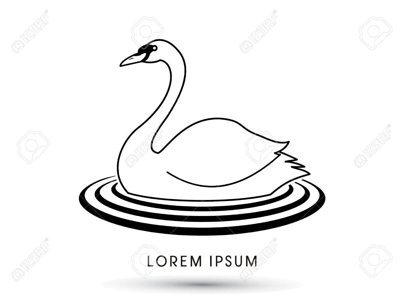Swan Swimming Designed Using Outline Graphic Vector Royalty Free