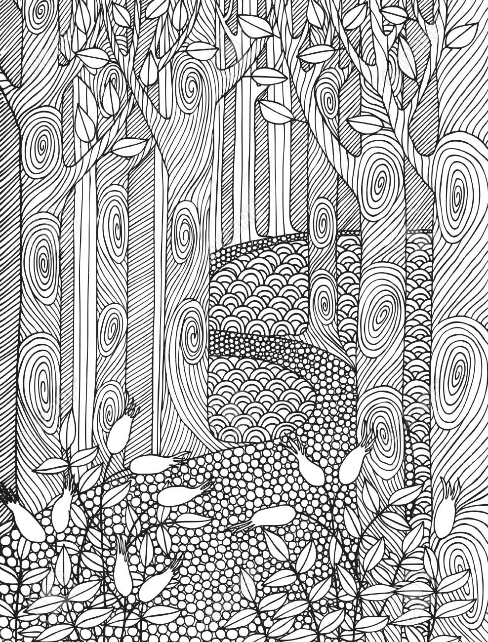 Adult Coloring Book Page Design With Forest Trees  Coloring Book