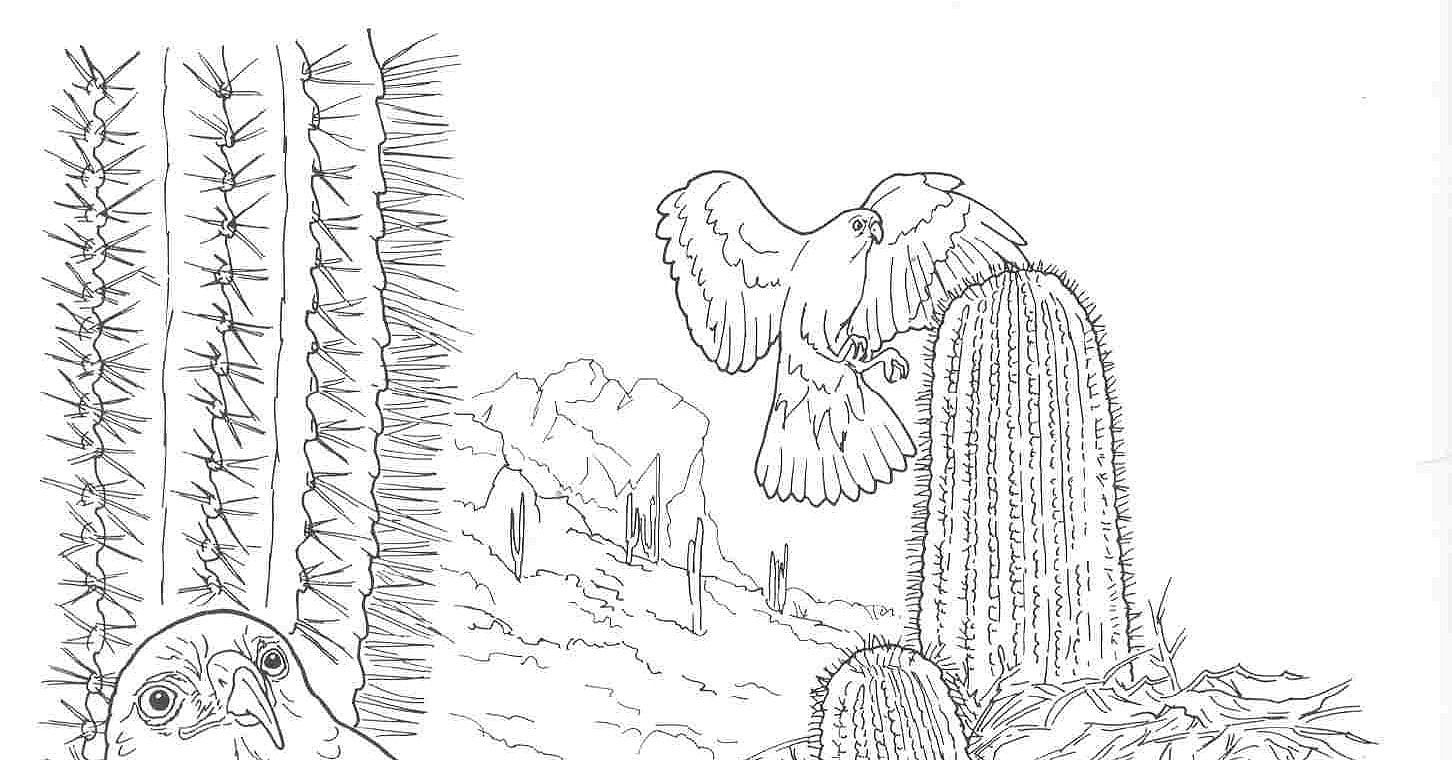 Desert Coloring Page