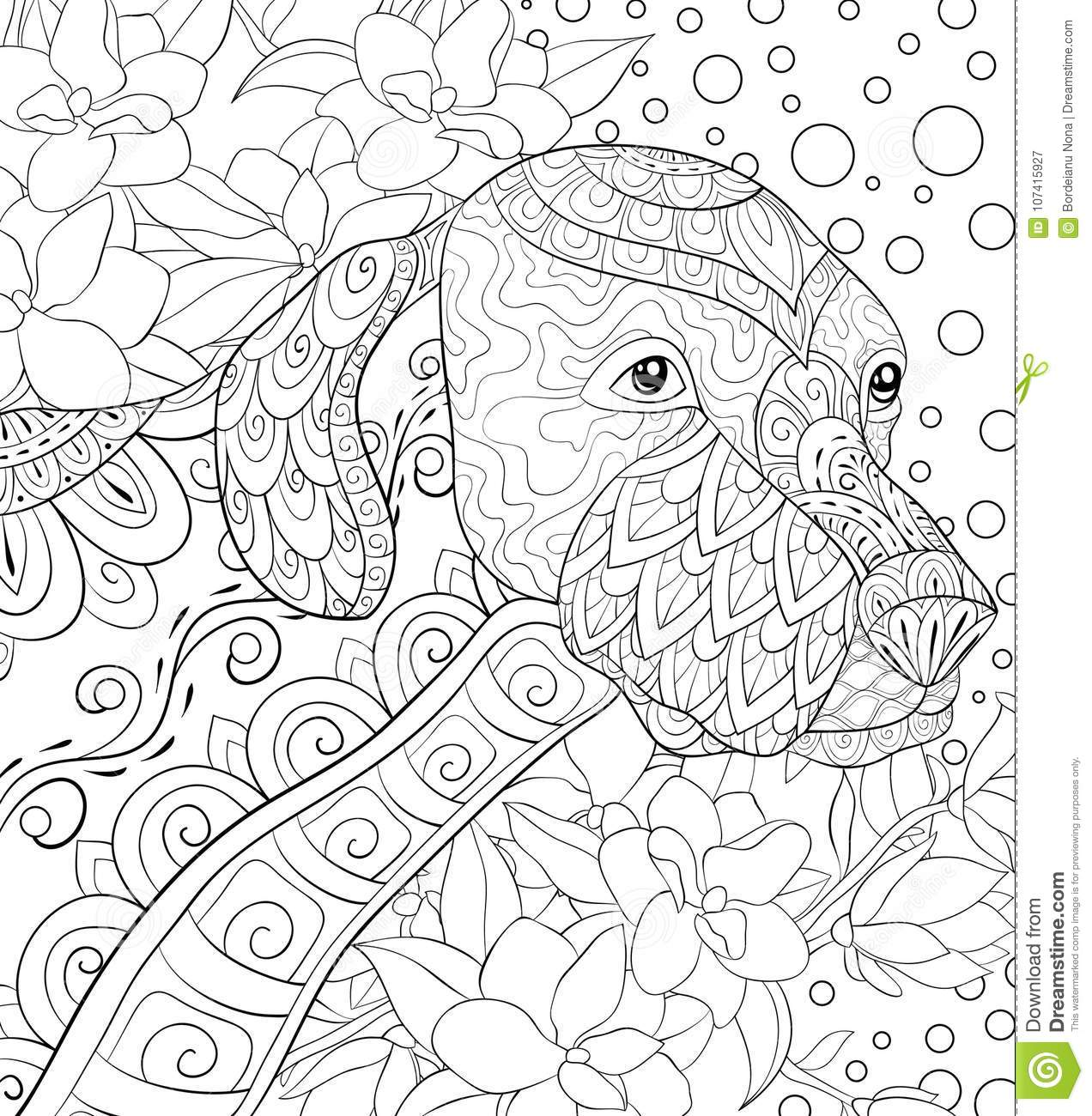 Adult Coloring Page A Cute Dog On The Floral Background For