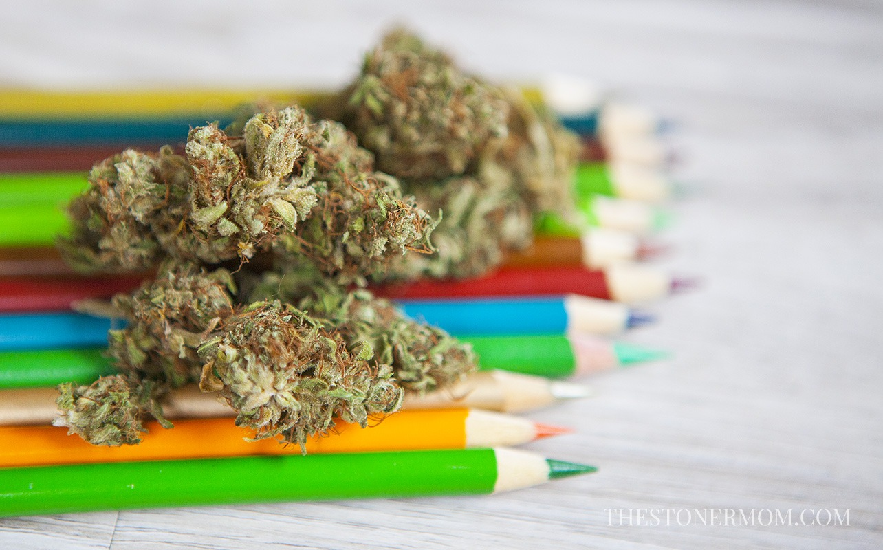 The Stoner's Coloring Book  Coloring For High