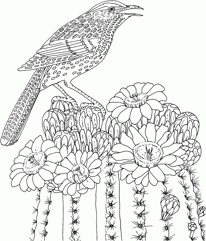 Detailed Bird Challenging Coloring Pages To Print Online
