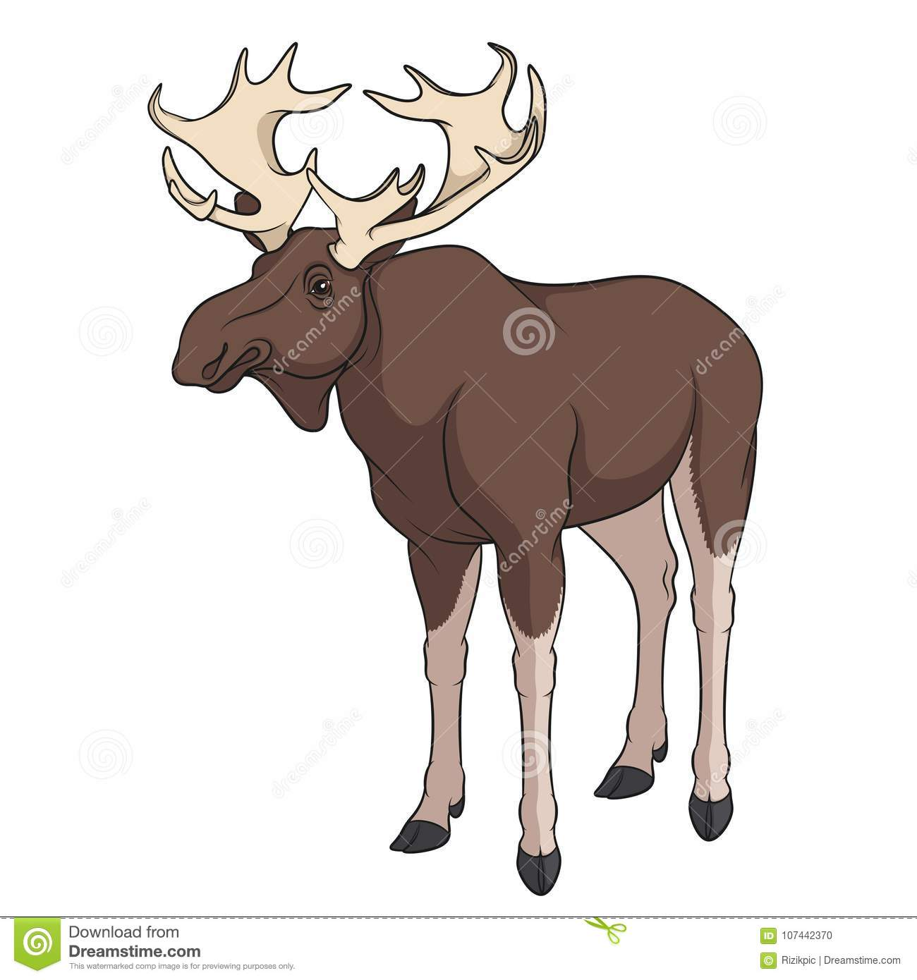Color Image Of Elk, Moose  Vector Object  Stock Vector