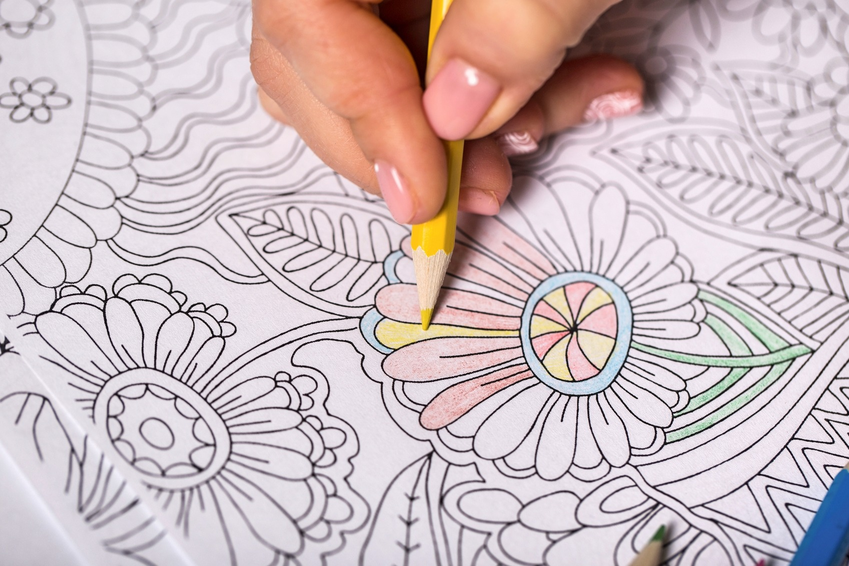 Happy National Coloring Book Day  10 Amazing New Books Plus Free