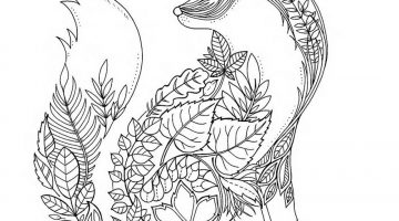Adult Coloring Books Near Me
