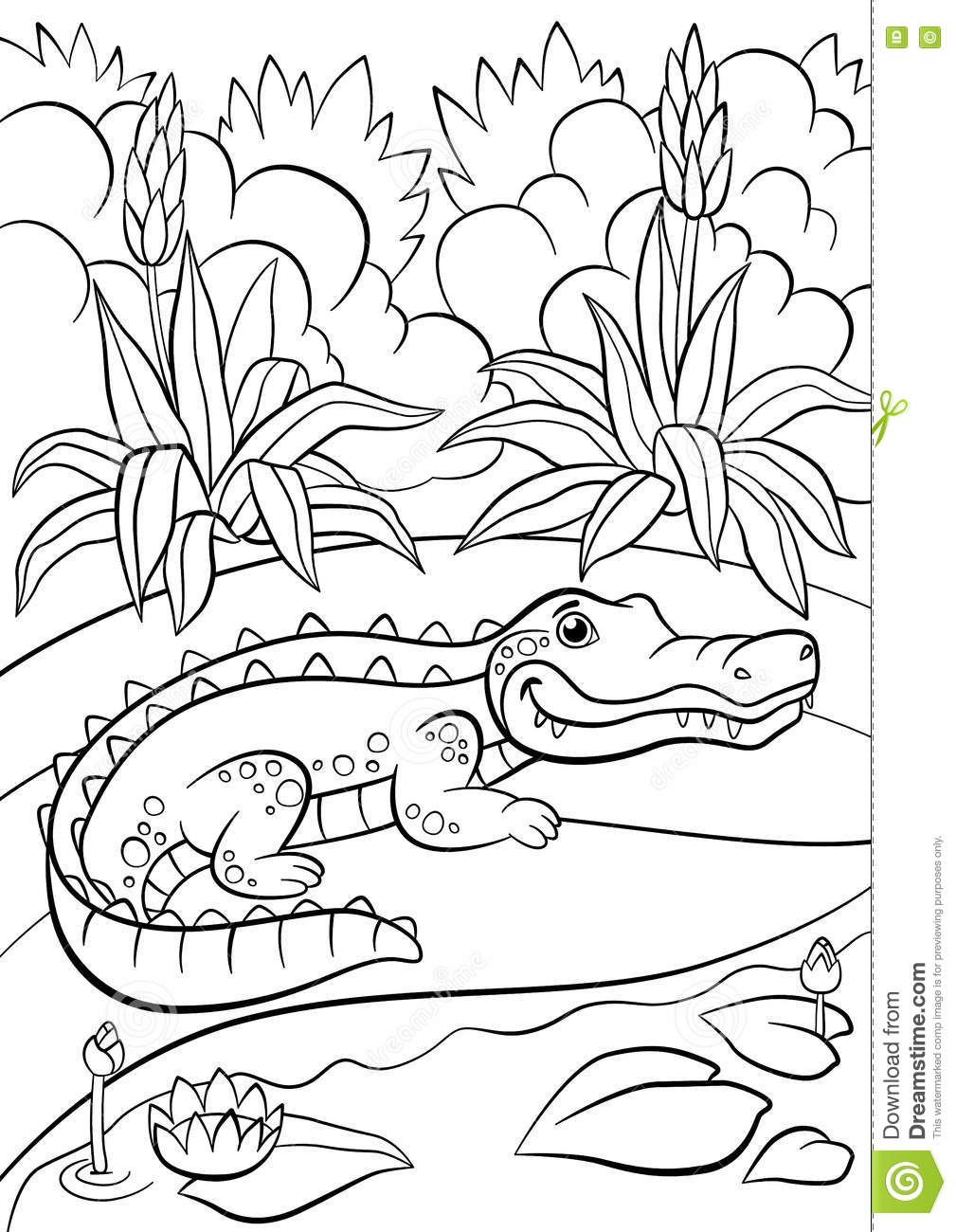 Coloring Pages  Animals  Little Cute Alligator Stock Vector