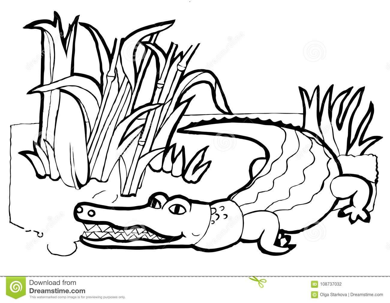 Crocodile, Colouring Book,black And White Version Stock Vector