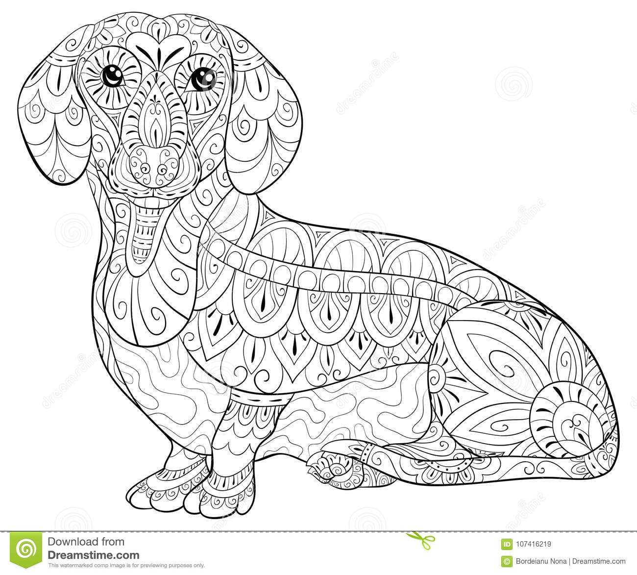 Adult Coloring Page A Cute Dachshund For Relaxing Zen Art Style