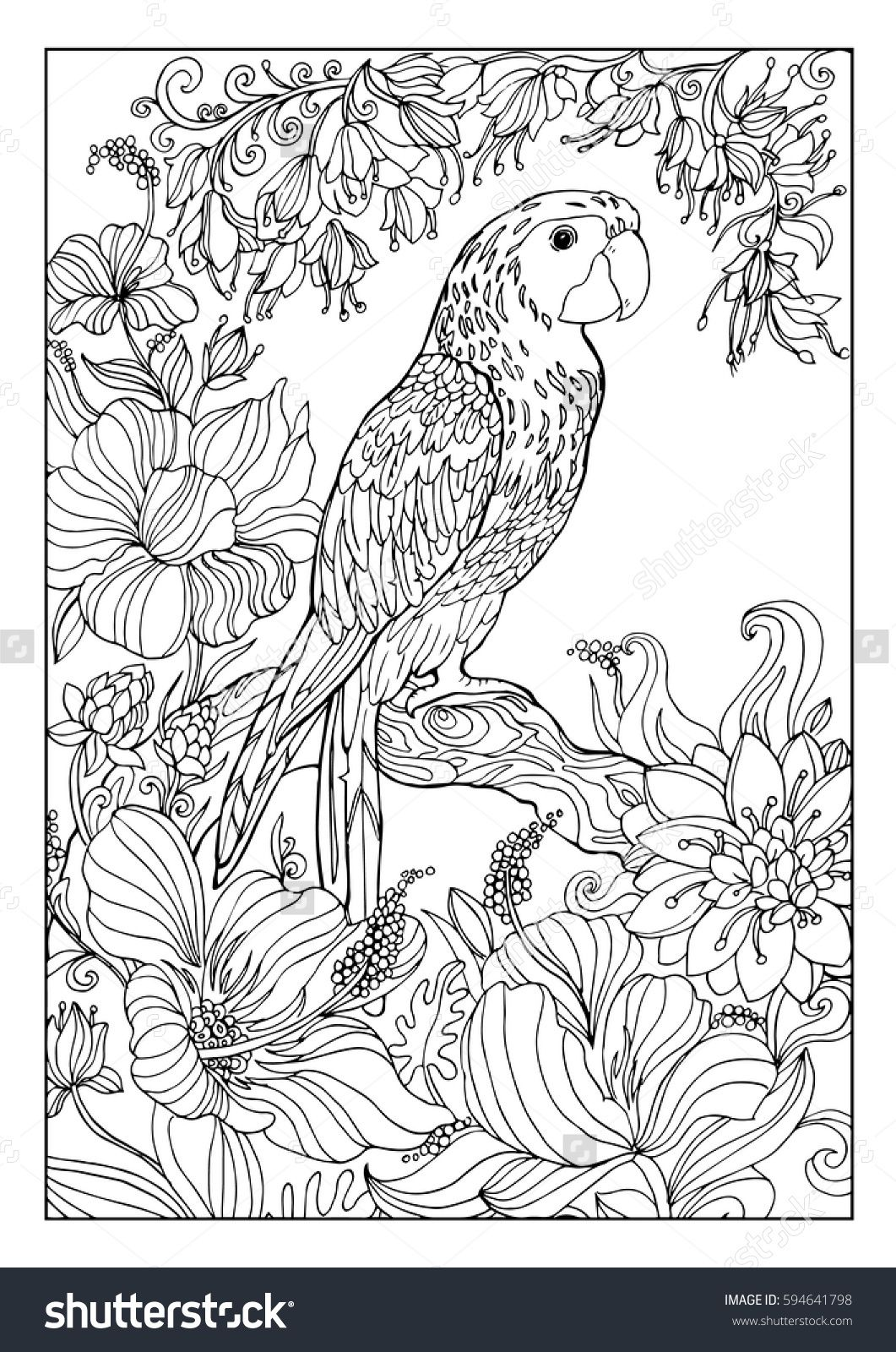 Coloring Book For Adults,a Large Parrot Macaw Exotic Colors
