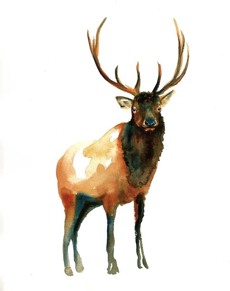Elk Watercolor Artwork