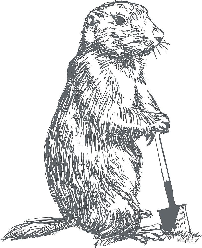 Prairie Dog (take A Break) Grey  By Bradyqk