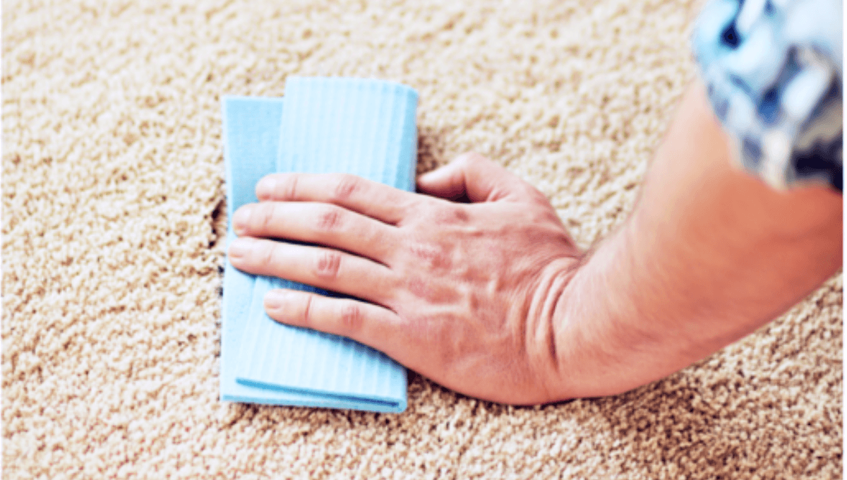 How To Clean Carpet Stains » Housewife How