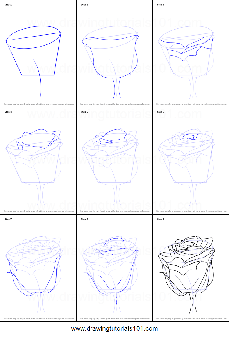 How To Draw A Rose With Stem Printable Step By Step Drawing Sheet