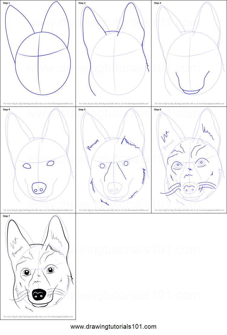 How To Draw German Shepherd Dog Face Printable Step By Step