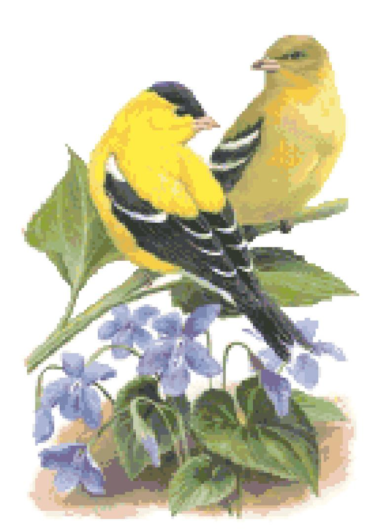 New Jersey State Bird & Flower Counted Cross Stitch Pattern