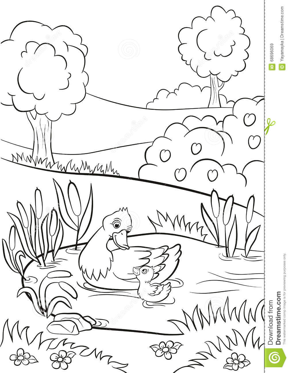 Kind Duck And Little Cute Duckling Swim On The Pond  Stock Vector