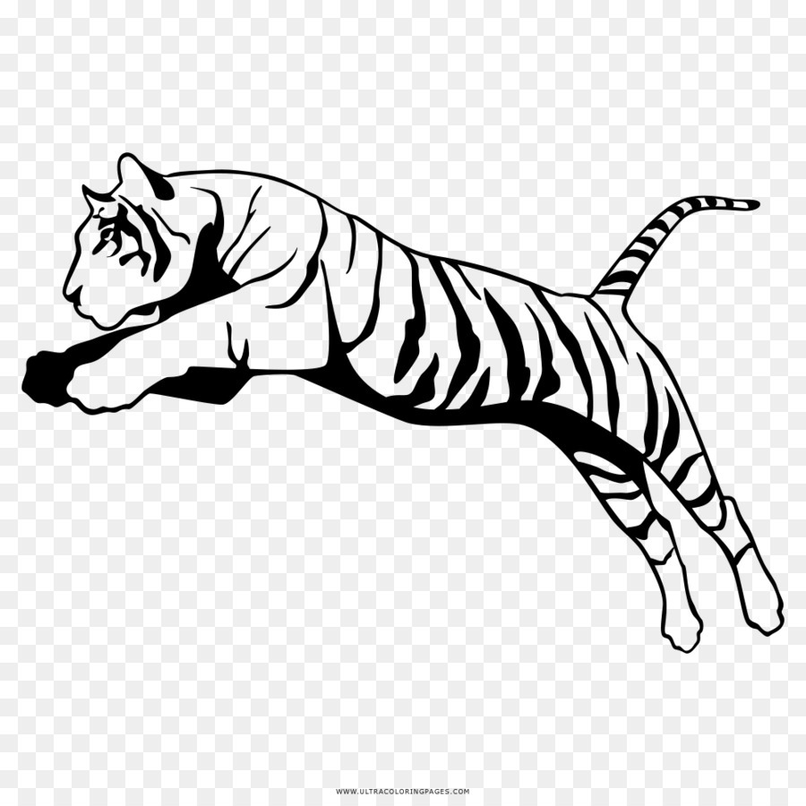 Hardwiring Happiness Drawing Bengal Tiger Symbol