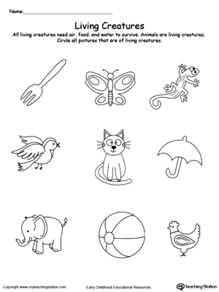 Printable Pictures Of Living And Nonliving Things