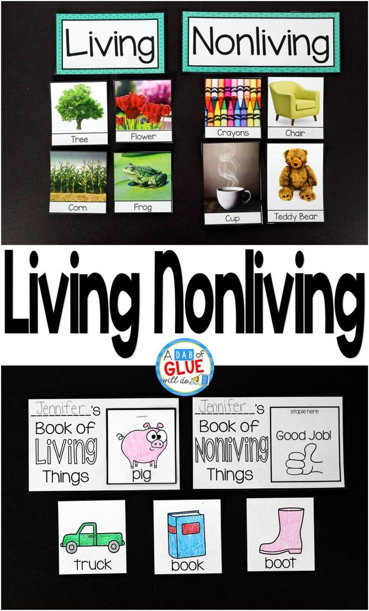 30 Living And Nonliving Things Coloring Pages