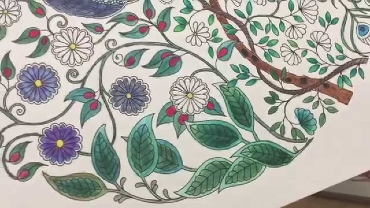 How To Use Watercolor Pencils With Adult Coloring Books