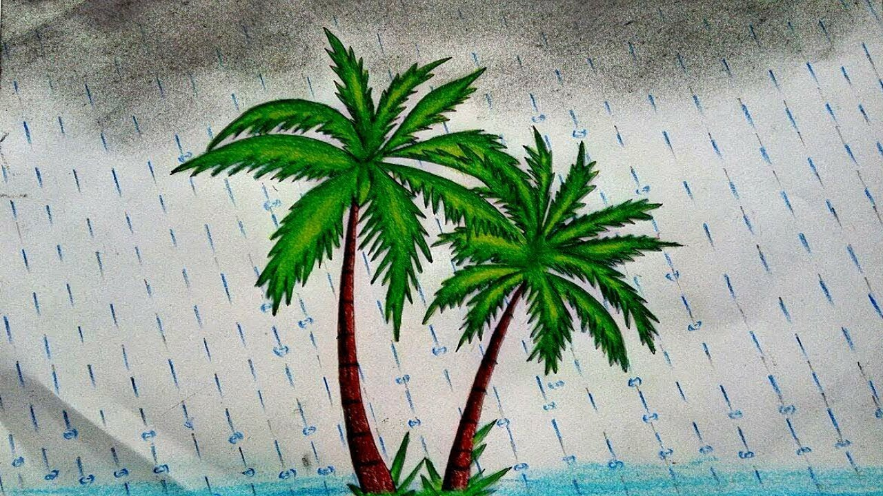 How To Draw Palm Tree Step By Step